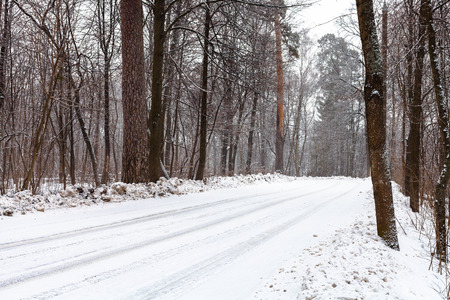 snowcovered: snow-covered country road in forest in winter day Stock Photo