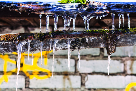 old barn in winter: icicles on old gully of house with brick wall in sunny winter day