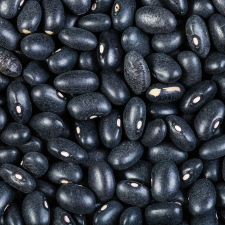 turtle bean: square food background - many raw Black turtle beans close up Stock Photo