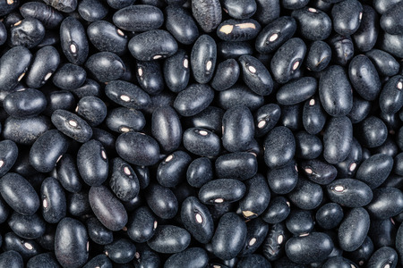 turtle bean: food background - many raw Black turtle beans