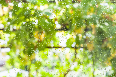 pane: raindrops on window pane of country house and blurred vineyard on background in summer day Stock Photo
