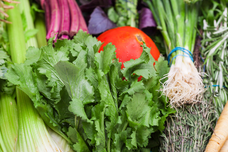 close up food: food background - bunches of fresh cut greenery close up Stock Photo