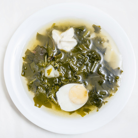sour grass: above view of vegetarian soup in plate from fresh green leaves of spinach, sorrel, beet greens with half of egg and sour cream on white background