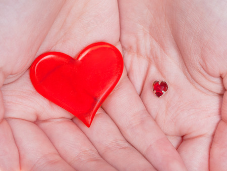 handbreadth: two red hearts in female handful close up