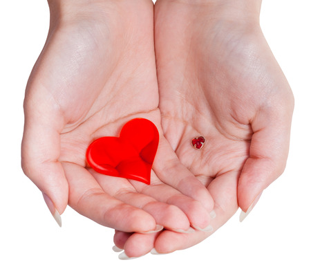 handbreadth: two red hearts in female handful isolated on white background
