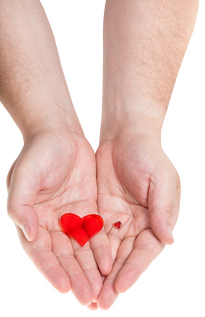 two red hearts on male palms isolated on white background Stock Photo