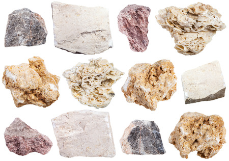coquina: collection from specimens of limestone rock isolated on white background