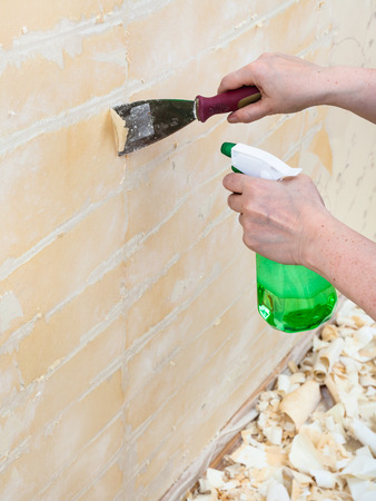 wet wallpaper: renovation of apartment, wallpapering: preparation of walls. Removing of wet old wallpaper with metal spatula