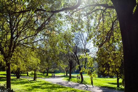 villa borghese: travel to Italy - green urban park of Villa Borghese gardens in Rome city in autumn