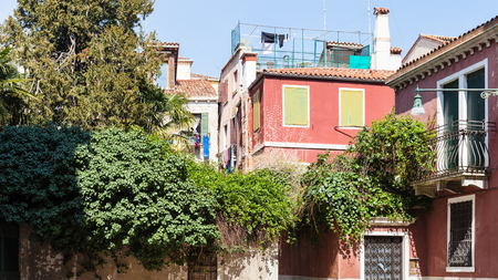 travel to Italy - residential houses in Castello district in Venice city in spring