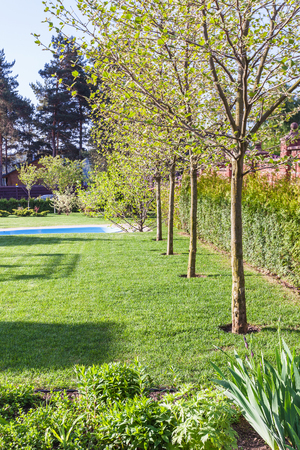 well-groomed lawn with pool on backyard of country house in spring evening