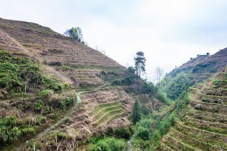 travel to China - terraced slope of hills near Dazhai village in area of Longsheng Rice Terraces (Dragons Backbone terrace, Longji Rice Terraces) in spring season Stock Photo
