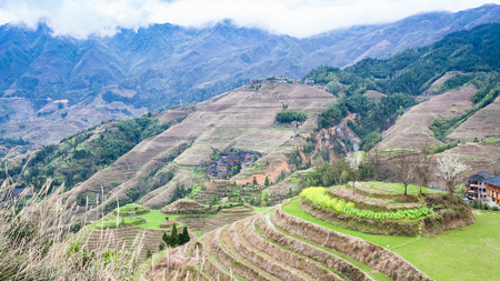 travel to China - view of terraced fields in Dazhai country from viewpoint Seven Stars Chase The Moon in area Longsheng Rice Terraces (Longji Rice Terraces) in spring Stock Photo