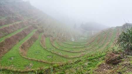 travel to China - mist over rice terraced gardens from viewpoint Music from Paradise in area of Dazhai Longsheng Rice Terraces (Dragons Backbone terrace, Longji Rice Terraces) country in spring Stock Photo