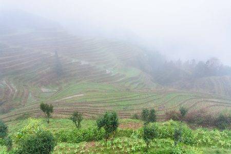 travel to China - view of rice terraced fields in fog from viewpoint Music from Paradise in area of Dazhai Longsheng Rice Terraces (Dragons Backbone terrace, Longji Rice Terraces) country in spring Stock Photo