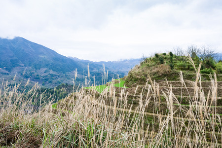 travel to China - view of terraced hill in Dazhai country in spring from viewpoint Seven Stars Chase The Moon in area Longsheng Rice Terraces (Longji Rice Terraces) 版權商用圖片