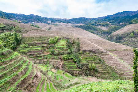 travel to China - terraced fields near Dazhai village in country of Longsheng Rice Terraces (Dragons Backbone terrace, Longji Rice Terraces) in spring