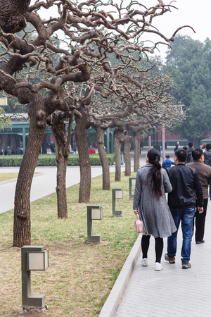 BEIJING, CHINA - MARCH 19, 2017: people on alley in Working Peoples Cultural Palace (Imperial Ancestral Hall) public park in Imperial city in spring. This park is part of Forbidden City green area