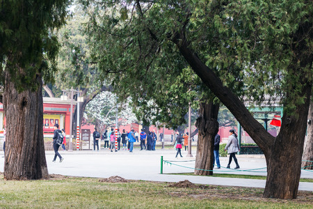 BEIJING, CHINA - MARCH 19, 2017: visitors in Working Peoples Cultural Palace (Imperial Ancestral Hall) public park in Beijing Imperial city in spring. This park is part of Forbidden City green area Editorial