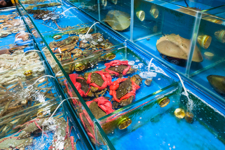 Travel to China - crabs and crayfishes on Huangsha Aquatic Product Trading Market in Guangzhou city in spring season