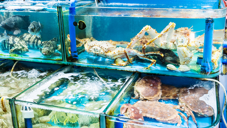 Travel to China - various crabs on Huangsha Aquatic Product Trading Market in Guangzhou city in spring season