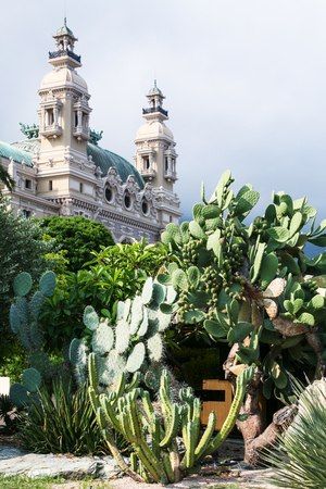 MONTE CARLO, MONACO - JULY 6, 2008: cactuses in st martin gardens and view of Casino de Monte-Carlo in Monaco. Principality of Monaco is sovereign city-state and country located on the French Riviera