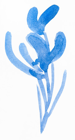 training drawing in suibokuga style with watercolor paints - blue sketch of orchid flower on white paper