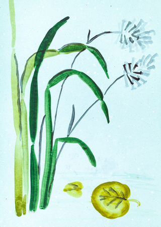 training drawing in suibokuga style with watercolor paints - cane and leaf of water lily on blue colored paper