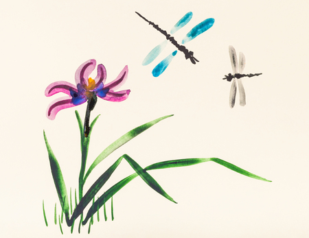 training drawing in suibokuga style with watercolor paints - Two dragonflies over iris flower on meadow in summer on ivory colored paper Stock Photo