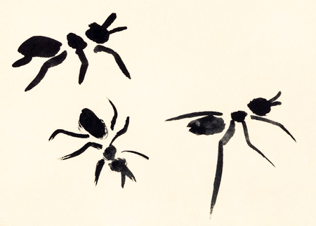 japanese paper art: training drawing in suibokuga sumi-e style with watercolor paints - three ants hand painted on cream colored paper Stock Photo