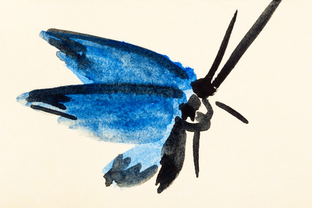 training drawing in suibokuga sumi-e style with watercolor paints - moth with blue wings hand painted on cream colored paper Stock Photo