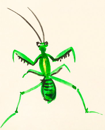 training drawing in suibokuga sumi-e style with watercolor paints - mantis painted on cream colored paper