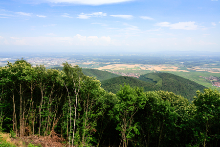 travel to France - above view of region Alsace Wine Route in Vosges Mountains valley from green Black Forest (Schwarzwald, Foret-Noire) Woodland