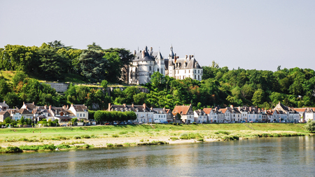 Travel to France - view of houses on island Ile dOr and castle in Amboise town near Loire river in Val de Loire region in summe
