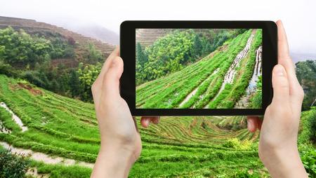 travel concept - tourist photographs rice beds on terraced hills near Tiantouzhai village in Dazhai Longsheng (Dragons Backbone, Longji) Rice Terraces area in China on tablet