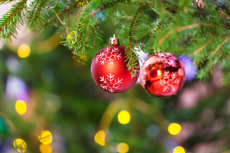 Xmas background - two red balls with snowflake on fresh christmas tree branch indoor