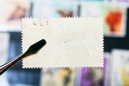 philately concept - tongs holds postage stamp with unused glue back side over stamp-album Stok Fotoğraf