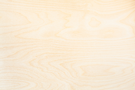 blank wooden background from natural birch board