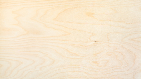 wooden panoramic background from natural birch board