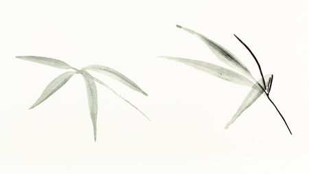 training drawing in sumi-e (suibokuga) style with watercolor paints - bamboo leaves are hand drawn on creamy paper