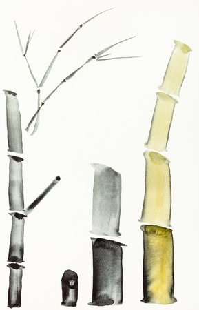 training drawing in sumi-e (suibokuga) style with watercolor paints - bamboo trunks are hand drawn on creamy paper