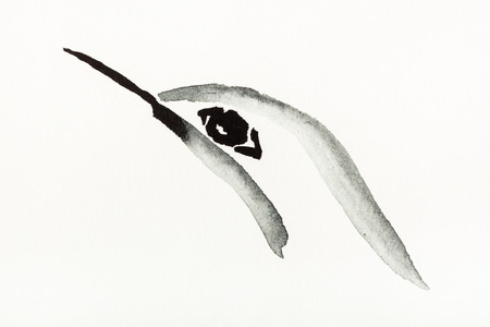 training drawing in sumi-e (suibokuga) style with watercolor paints - hummingbird head is hand drawn on creamy paper