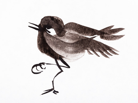 training drawing in sumi-e (suibokuga) style - little bird handpainted by black watercolors on white paper Banco de Imagens