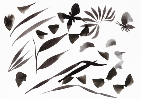 training drawing in sumi-e (suibokuga) style - brush strokes shaped leaves and butterflies by black ink on white paper Banco de Imagens