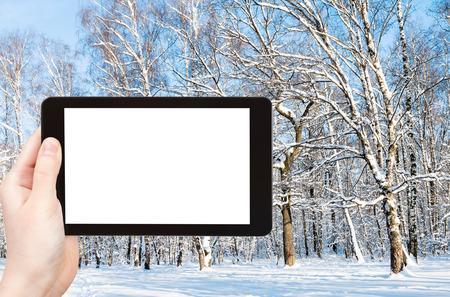 concepto de viaje: fotografías turísticas del claro del bosque en el parque de la ciudad en invierno en la ciudad de Moscú en el teléfono inteligente con pantalla de recorte vacía con lugar en blanco para publicidad Foto de archivo