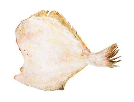 Poisson de plie sans tête congelé cru isolé sur blanc Banque d'images