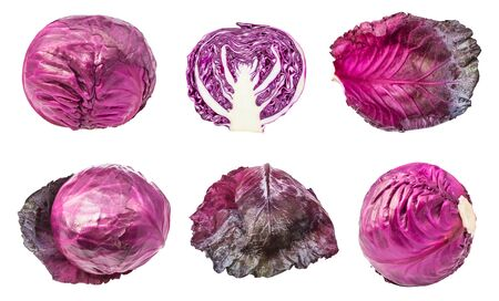 Various leaves and heads of red cabbages isolated on white Фото со стока