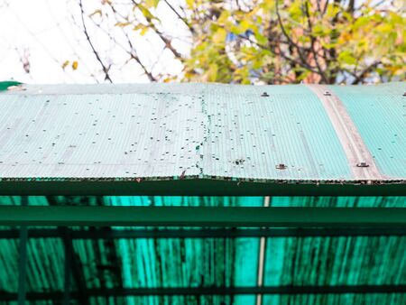 old cracked green translucent honeycomb polycarbonate panel on roof of outdoor shed close up Zdjęcie Seryjne