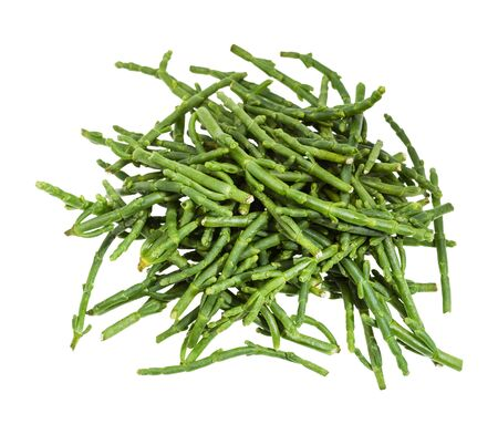 top view of pile of fresh twigs of Salicornia (glasswort) plant isolated on white background