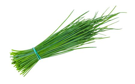 bunch of fresh Chives herbs isolated on white background